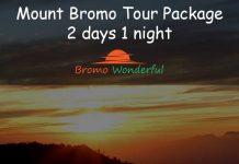 Mount Bromo Tour Package 2 days 1 night